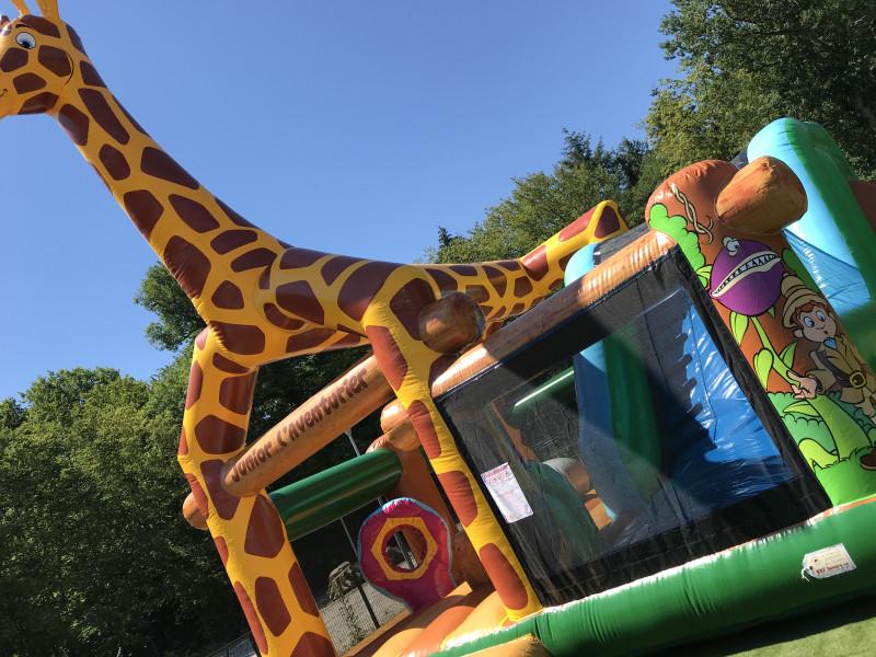 Complexe girafe