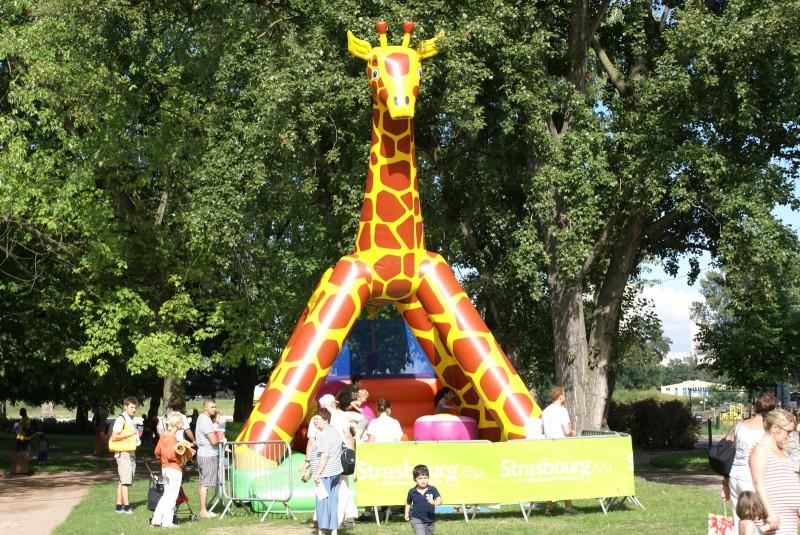 Girafe moyenne